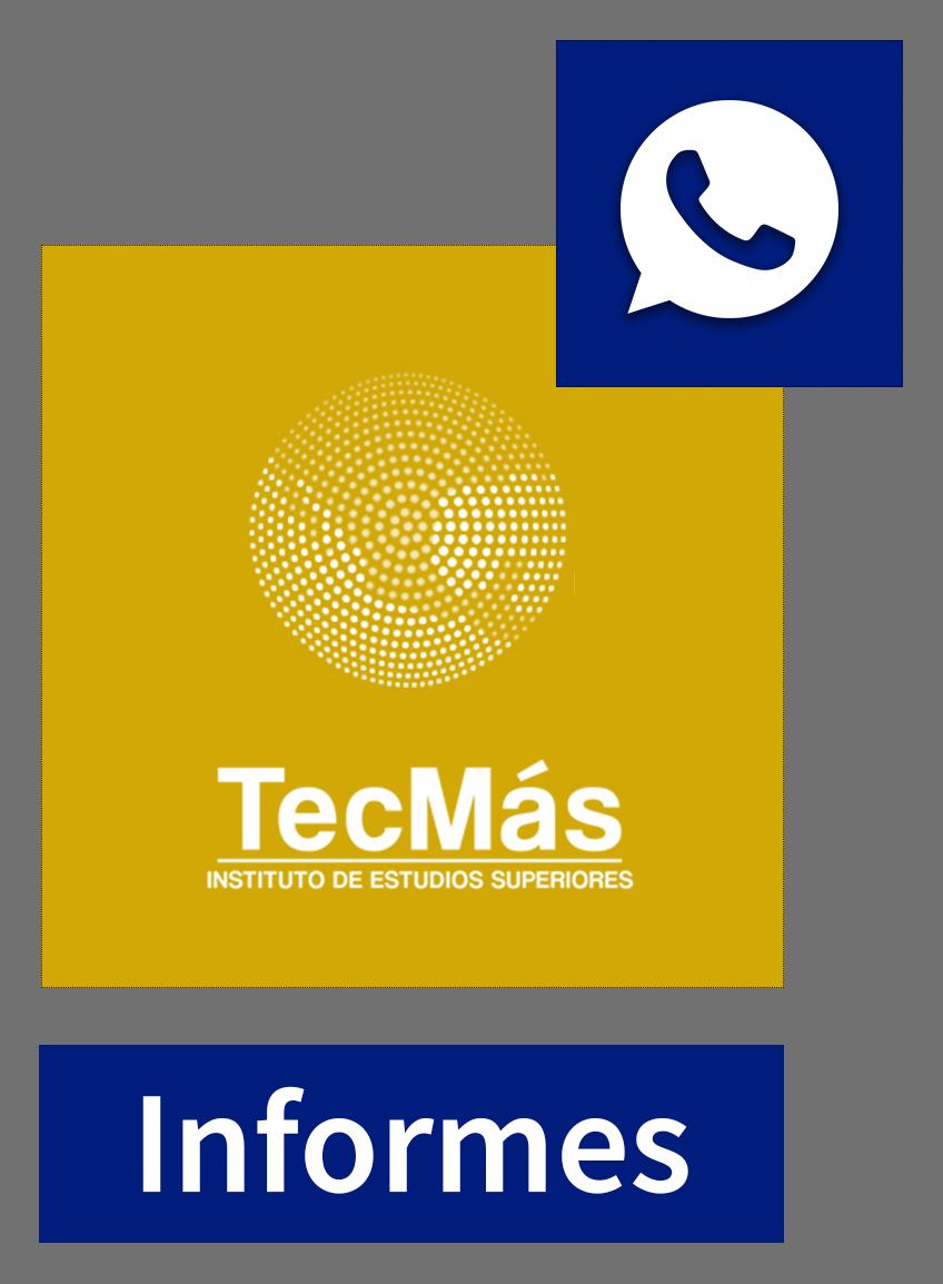 Contacto TECMÁS